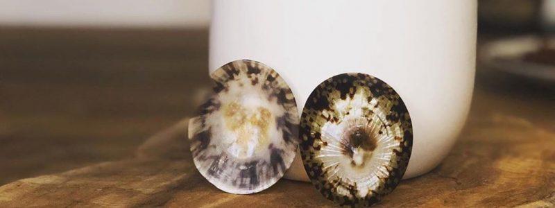 mooie-borstvoedingsschelpen